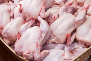 Мясо говядины и мясо куриное, оптовые поставки